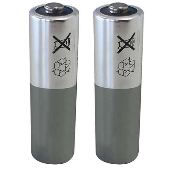 210 - Coppia di batterie al litio