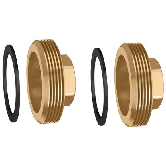559 - Pair of plugs with gaskets